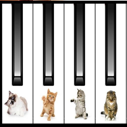 CAT PIANO (Piano-meow Cat)