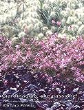 Giardinaggio, che passione!: Piccolo manuale di giardinaggio per amatori principianti