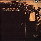 Songtexte von Natural Self - The Art of Vibration