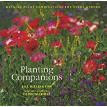 Planting Companions: Winning Plant Combinations for Every Garden