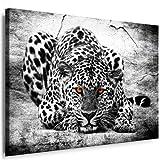 Bild auf Leinwand Raubkatzen - Panther - Leopard - Panther - Jaguar Bild Wandbilder und Kunstdrucke auf Leinwand Bilder fertig gerahmt auf Holzrahmen kein Poster oder Plakat - Günstiger als Ölbild Gemälde - Leinwandbild