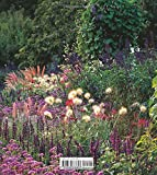Image de Grasses in the Garden : Design Ideas, Plant Portraits and Care