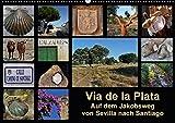 Via de la Plata - auf dem Jakobsweg von Sevilla nach Santiago (Wandkalender 2018 DIN A2 quer): Pilgern auf einer alten Römerstraße - 1000 km zu Fuß ... Natur) [Kalender] [Apr 01, 2017] B., Rina - Rina B.
