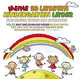 Meine 20 Liebsten Kindergarten Lieder Vol.5 Zum Si