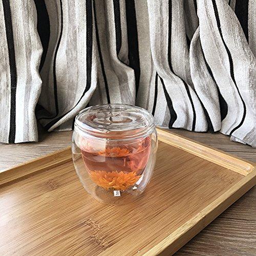 Damlonby Verre résistant à la chaleur de la couche double plateau tasse tasse tasse tasse isotherme jus transparent ,250ml + couvercle en verre