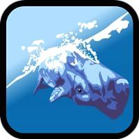 Delphin-Show: Wal- und Delfin-Spiele für Kinder kostenlos