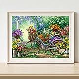 NNMNBV DIY-Kunstdiamantmosaik Heimdekoration Diamant Gemälde Kreuzstich Landschaft Fahrrad Blume Diamant Stickerei