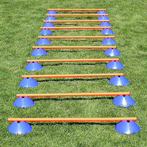 Bild: MiniHürden 10er Set mit blauen Markiermulden für Agility  Hundetraining orange