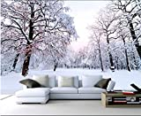 Lqwx Moderne Individuelle Fototapete Home Decoration Wallpaper Roll 2016 Bwautiful Winter Schnee Landschaft Wallpaper-3D Brick Wallpaper 120 Cmx 100 Cm