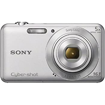 Sony Cyber-shot DSC-W710 16.1MP Point-and-Shoot Digital Camera (Silver) with Camera Case