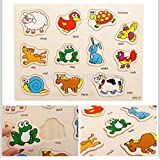 FunBlast® Wooden Colorful Learning Educational Board For Kids With Knobs, Educational Learning Wooden Board Tray, SIZE- 30 X 22 CM, Available In 8 Different Variants (Animal)