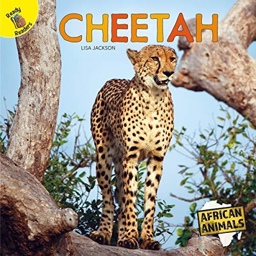 African Animals Cheetah, Grades PK - 1 (English Edition)