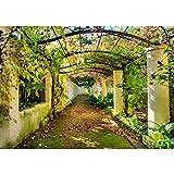 Fotomural, 300x 210cm Premium Plus fotográfico pintado-cuadro de pared-Way In My...