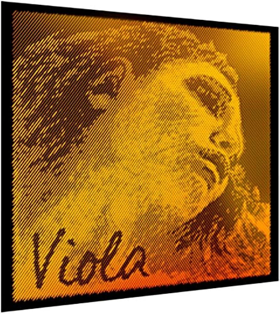 Pirastro Evah Pirazzi Gold Viola Set - Mittel