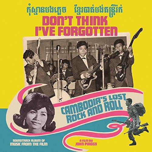 Don't Think I've Forgotten:Cam [Vinyl LP]