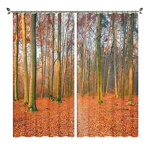 XFKL Herbst Naturlandschaft 3D Print Blackout Vorhänge, Wärmeisolierung & Geräuschreduzierung Wohnzimmer Schlafzimmer Fenster Drapiert 2 Panels,D,W264*H160cm -