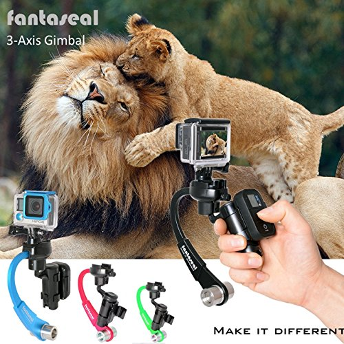 Fantaseal® Actionkamera Mechanische Inertial Stabilizer für GoPro Handle GoPro Handgriff +GoPro Fernbedienung Halter für GoPro Hero5/Session Hero4/Session 3+/3 (OHNE Batterie OHNE Motor ) -Schwarz
