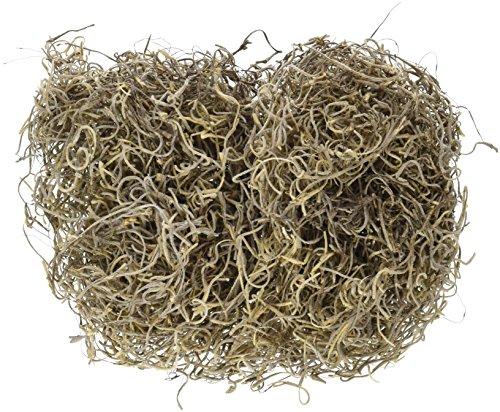 Floracraft Spanisch Moos: 1Oz natur (Moss Spanisch)
