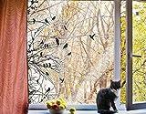 Fenstersticker No. 742Äste und Vögel im Frühling, Fenster Film, Fenster Tattoo, Glas Aufkleber, Fenster Kunst, Fenster DÃ © cor, Fensterdekoration, Fensterbild, Maße: 121cm x 80cm