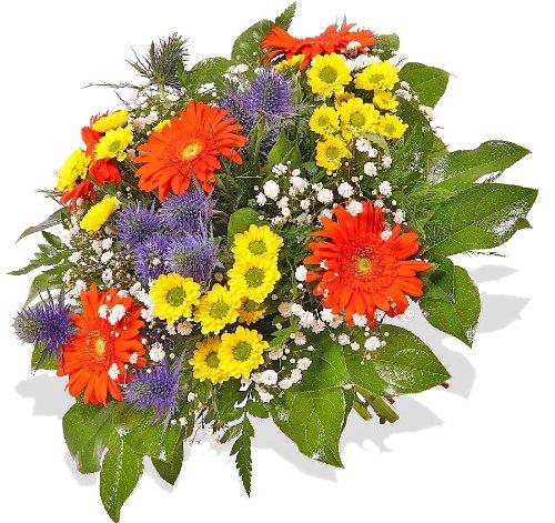 """floristikvergleich.de Blumenstrauß Blumenversand """"Dankeschön…!"""" +Gratis Grußkarte+Wunschtermin+Frischhaltemittel+Geschenkverpackung"""