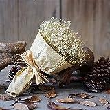 vijTIAN - Gypsofila Naturale essiccato, Fatto a Mano, Decorazione per la casa, Fiori secchi Naturali con Stelle, gipsofila, per Matrimoni, composizioni Floreali e Decorazioni per la casa Bianco