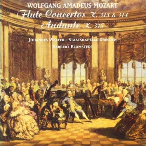 Flute Concerto No. 1 in G Major, K. 313: I. Allegro maestoso