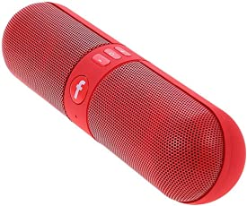 TECHPOOL Capsule Shaped Bluetooth Speaker with Call Function & FM Radio Wireless Bluetooth Speakers (Red)