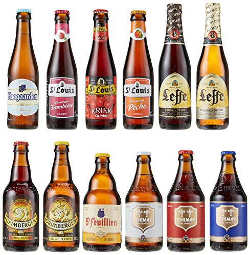 craft-beer-paket-belgien-11-x-033-l-1-x-025-l
