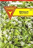 Bärlauch, Allium ursinum, Wilder Knoblauch, ca. 35 Samen