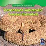Diamondback Rattlesnake / Cascabel Diamantada (Killer Snakes / Serpientes Asesinas)
