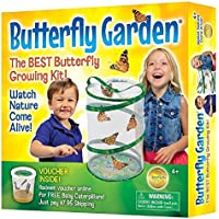 Insect Lore Butterfly Garden