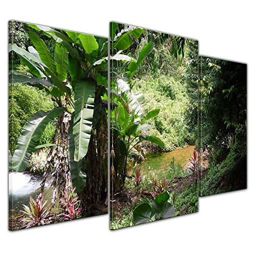 Kunstdruck - Bananenbaum im Dschungel - Bild auf Leinwand 100 x 60 cm 3tlg - Leinwandbilder - Bilder als Leinwanddruck - Pflanzen & Blumen - Natur - Tropen - Bananenstaude im Wald