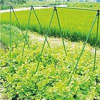 Rankhilfe Pflanzstäbe Gartenständer Stellage Rankgerüst Ranknetz Stütznetz für Kletterpflanzen 3 Größen (1,5m Ø 11mm)