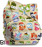 "LittleBloom, Reusable Pocket Cloth Nappy, Fastener: Popper, Set of 1, Pattern 4, Without Insert, (see ""Special Offers and Product Promotions"" for Special Offers Detail)"