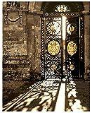 OBELLA Malen nach Zahlen Kits || die Sonne durch die alten Eisen geschnitzt Gate Die Sonne durch das alte geschnitzte Eisentor 50 x 40 cm || Malen nach Zahlen, DIGITAL Ölgemälde (Mit Rahmen)