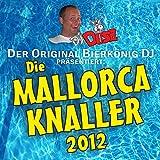 Bunga Bunga Bungalow (DJ Mix)