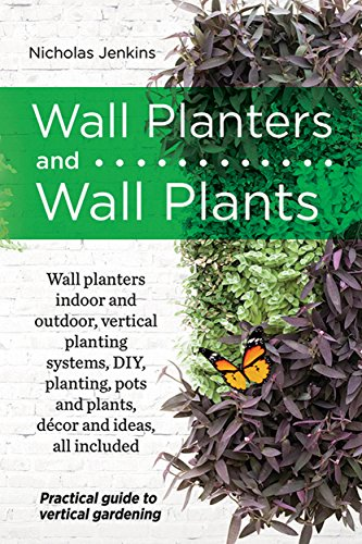wall-planters-and-wall-plants-practical-guide-to-vertical-gardening
