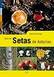 Guía de setas de Asturias (Asturias Libro a Libro)
