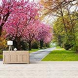 azutura Rosa Kirschblütenbäume Wandbild Waldweg Foto-Tapete Leben Dekor Erhältlich in 8 Größen Riesig Digital