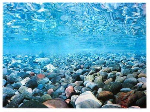 Rückwandfolie 120cm x 60 cm Rückwandposter für Aquarien