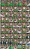 Alle 63 DFB Ferrero Team-Sticker zum selber einkleben Komplett-Set + Sammelheft WM 2014 von Ferrero Duplo Hanuta Kinder Riegel Album