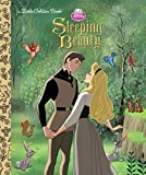 Best Disney Princess Of Beauties - Sleeping Beauty (Disney Princess) Review