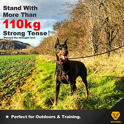 WATFOON Indestructible Waterproof Dog Lead for Large Breed Dogs,Professional for Training and Tough for Daily Walking - GII Series Black Red 0.8M//1M//1.2M//1.3M//1.5M//1.8M 1.6M