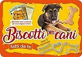 Biscotti per cani fatti da te. 50 ricette sane e naturali per il tuo miglior amico. Con gadget