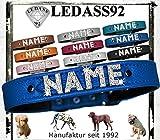 LEDASS92 Hundehalsband mit Namen Strass Halsband Name Strassbuchstaben Swarovski Elements (M - 30cm - 36cm Halsumfang verstellbar, blau)