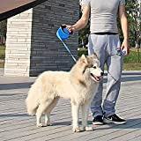 PEDY Roll-Leine Hundeleine Rollleine Einziehbare Führleine, 8 m blau für Hunde bis max. 50 kg - 6