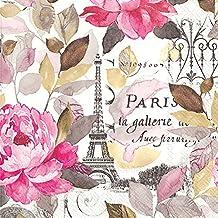 Ideal Home Range 20Count Jardin Paris de 3capas servilletas de papel, multicolor (Cóctel 25X 25CM)
