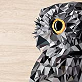 Cuadros Lifestyle 2D-Wandobjekt aus Holz | Eule | UHU | Polygon | Holzbild | Shabby-Look | Landhaus | Vintage | Holzobjekt | Deko | Holzdruck | Geschenk, Größe:ca. 50x50cm