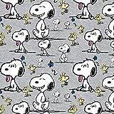 Snoopy Peanuts Woodstock Grau Meliert - Jersey Biostoff