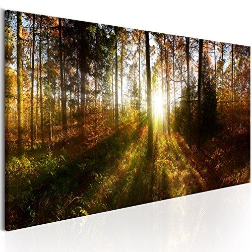 Bilder 135x45 cm – XXL Format - Fertig Aufgespannt – TOP - Vlies Leinwand - 1 Teilig - Wand Bild - Kunstdruck - Wandbild - Wald Natur Landschaft Baum c-B-0173-b-a 135x45 cm B&D XXL Landschaft Leinwand Malerei